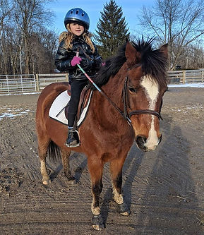 Our newest rider and our perfect additio