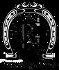 logo playeras pags mas grande 2.png