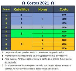 Costos ponys 2021