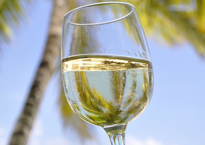 clear_wine_glass_with_water-scopio-c213c