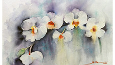 Abstract White Orchids