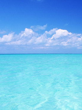 Developing Your Growth Strategy:  Seeking Clear Blue Water