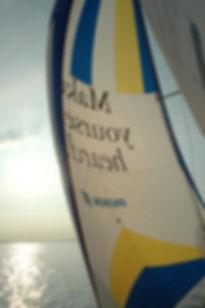 Sailing Legal Business World