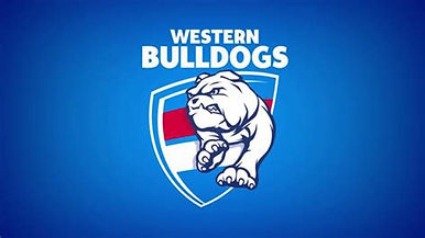 Bulldogs flag.jpeg