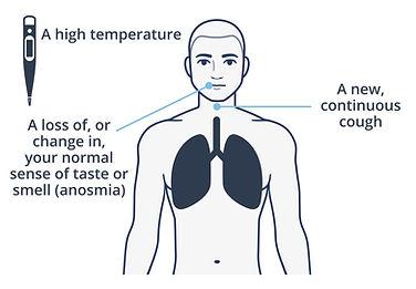 covid-19-symptoms.jpg