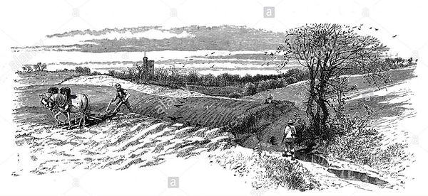 1870-horse-ploughing-in-fields-near-st-p