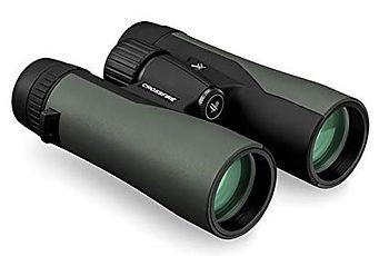 Binocular image.jpg