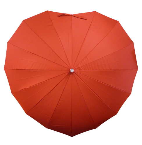 The Heart Umbrella
