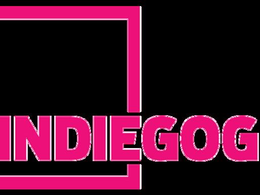 INDIEGOGO EXPLAINED