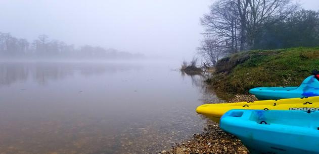 Foggy mornings!