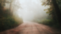 foggy road - for page.png