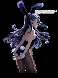 Seishun Buta Yarou wa Bunny Girl Senpai no Yume wo Minai wallpaper