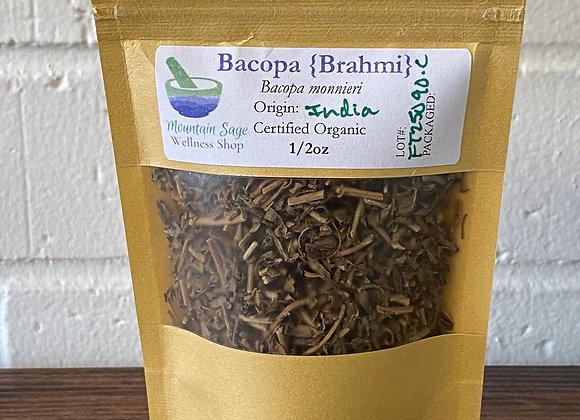 Certified Organic Bacopa ∣ Mountain Sage Wellness Shop