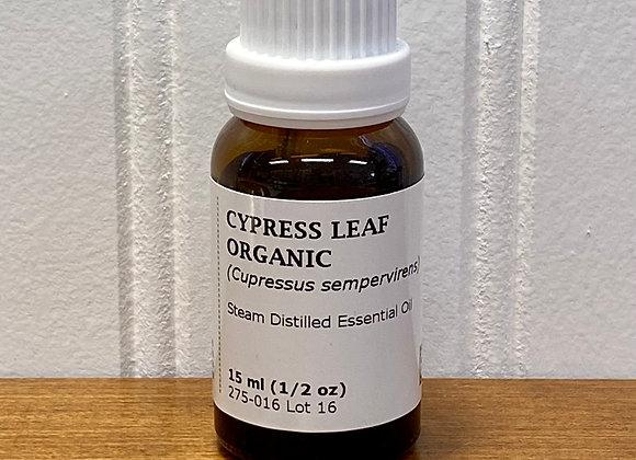 Cypress Leaf Essential Oil, Organic
