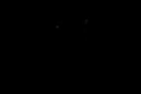 Strega_Logo_New_WithEG.png
