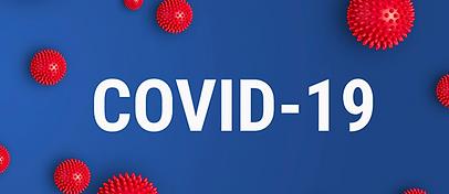 Covid-19, approvate dal Parlamento le linee guida del piano strategico sui vaccini anti-Covid