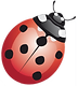 coccinella.png