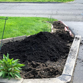 Compost Planting Strocture and Mulching