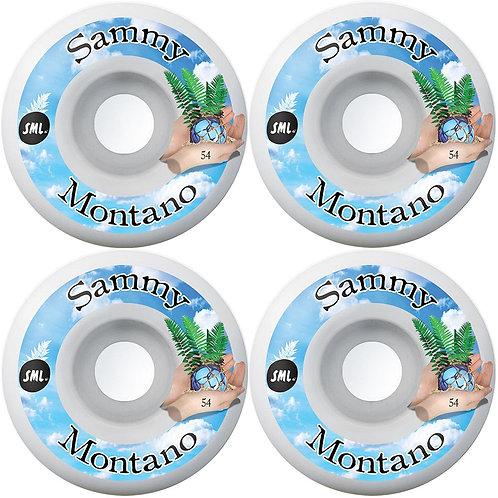 SML Sammy Montano Tide Pool wheels 54mm