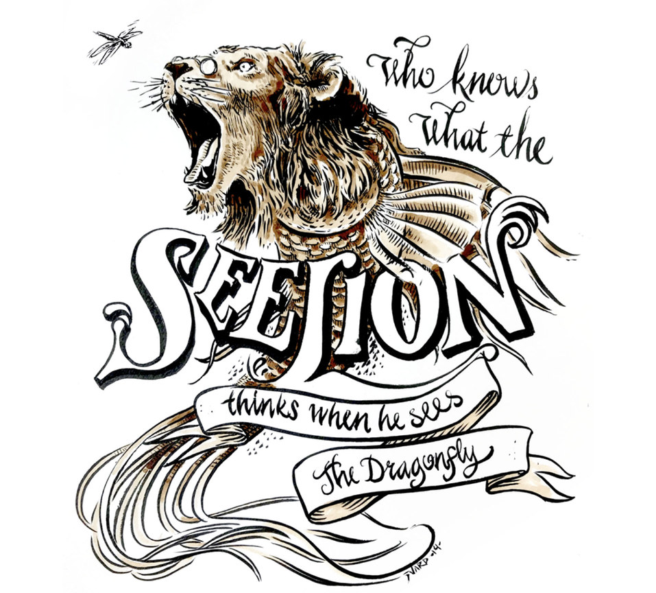 The SeeLion