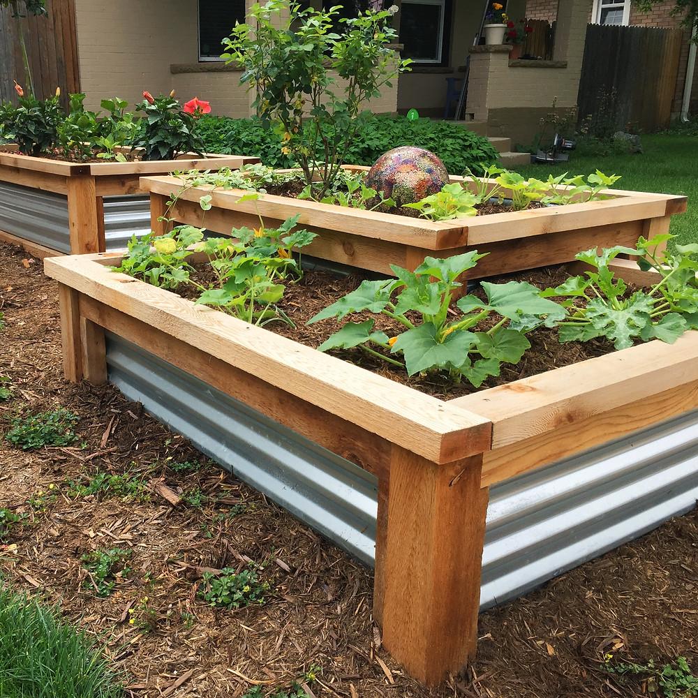 Denver Landscape Design: Raised Beds make it easier to plant, weed, and harvest your vegetables!