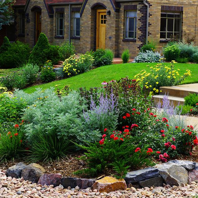 Denver Landscape Design - Xeriscape After