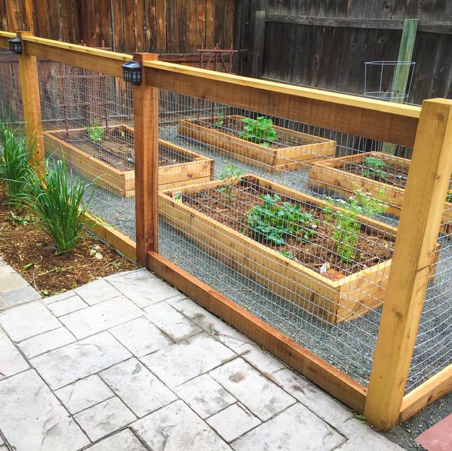 Denver Vegetable Garden Design