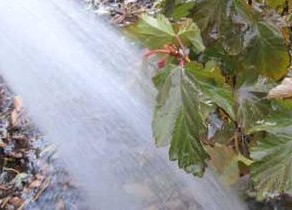 Denver Wintertime Watering