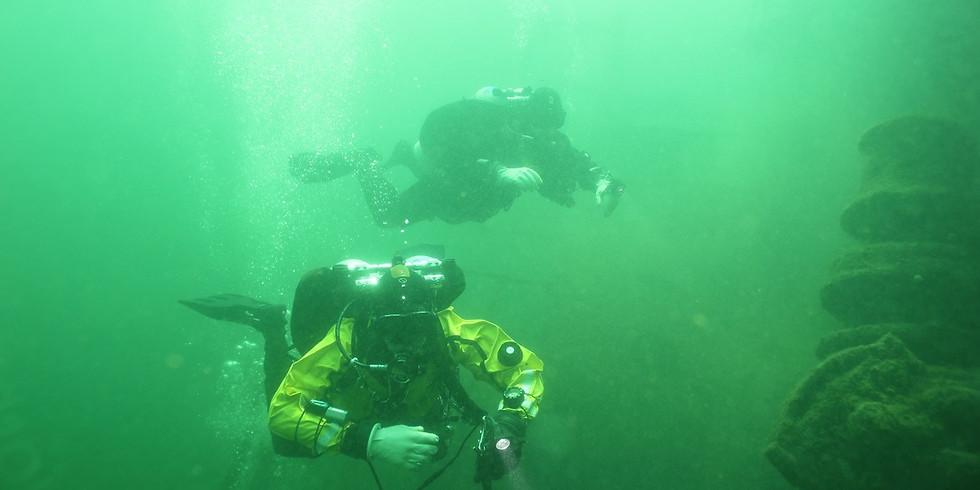 Tec 45 critical skills dive