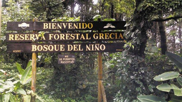 Bosque_del_Niño_1