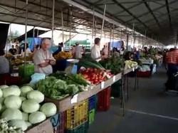 Feria del Agricultor Grecia 3