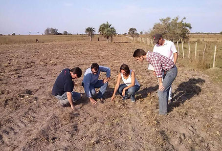 preparation-of-soil-with-experts.jpg