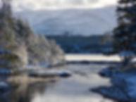 Loch Morlich Cairngorms Birding
