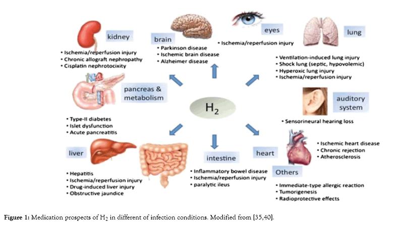 internal-medicine-infection-9-314-g001.p
