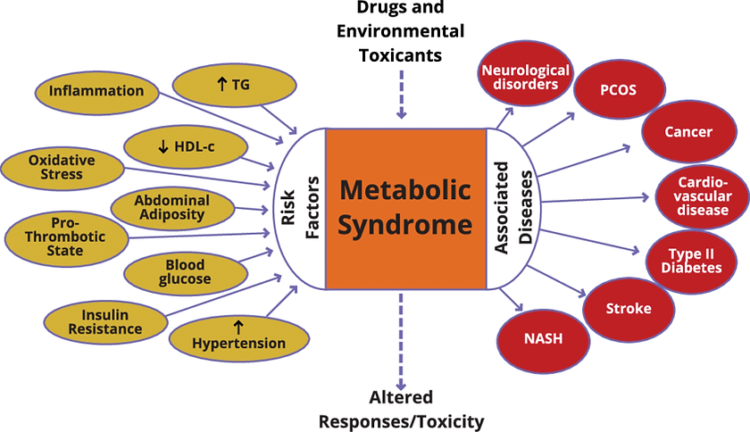 Metabolic-syndrome-with-its-associated-r