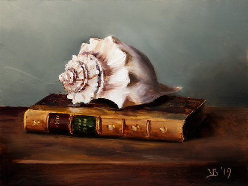 Seashell and an Antique Book