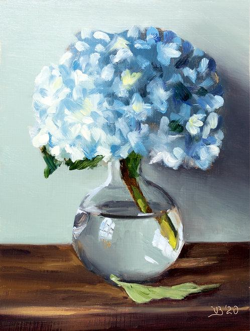 Blue Hydrangea in a Glass Vase