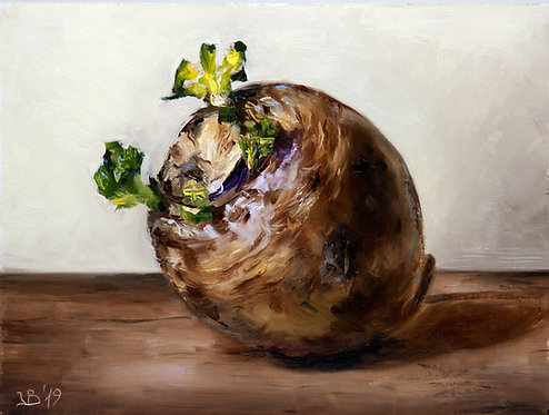 Rutabaga / Swedish Turnip