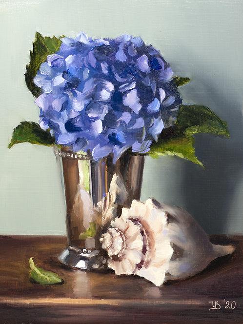 Blue Hydrangeas and Seashell