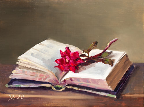 Open Book and Rose