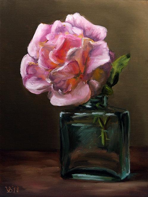 Garden Rose #2