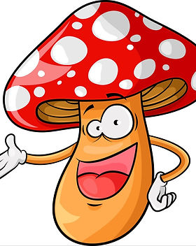 cartoon-mushroom-vector-969655_edited.jp