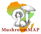 mushroommap_logo.png