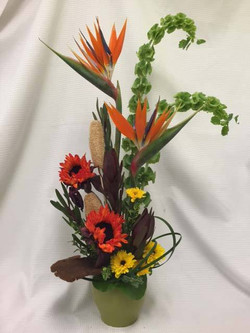 Birds arrangement