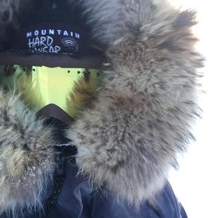 Walter Mather DOP, Arctic