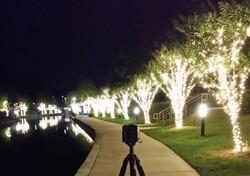 Woodlands Waterway at Night