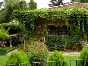 Лято в България - Морски ботанически градини