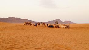 Марокански дни и нощи
