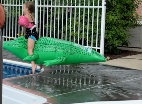 Riding an alligator is possible, it just takes practice