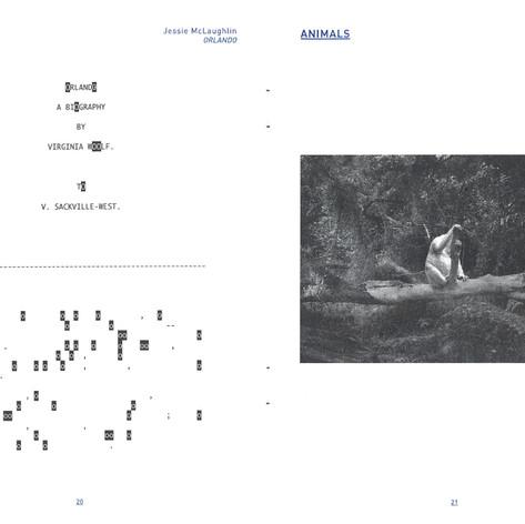 Androgyny, Jessie McLaughlin and Animals, Robert Zhao Renhui